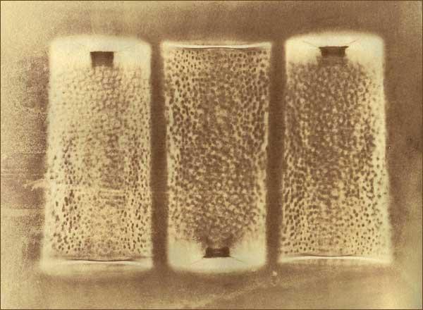 Мимикрия 2003 Гуммиарабиковая печать